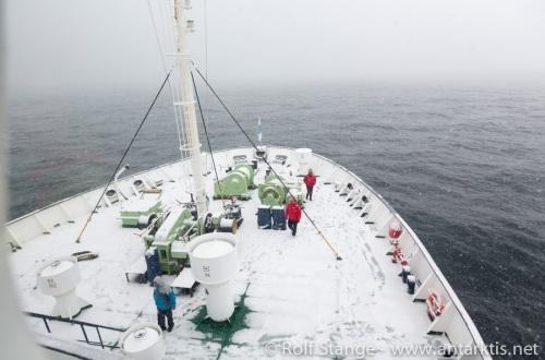 Antarktische HI - Rossmeer