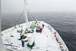 d4_ortelius-snow_24jan15_03
