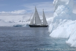 anne-margaretha_sailing_in_antarctica