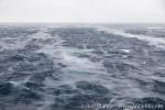 Frische Eiskristalle bilden sich im sturmgepeitschten Wasser.