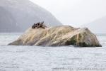 180314c_fjordo-pia_08