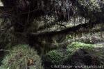 180402a_isla-canal_54