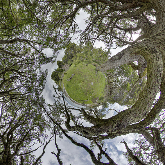 Nationalpark Tierra del Fuego, HDR-Panorama (little planet)